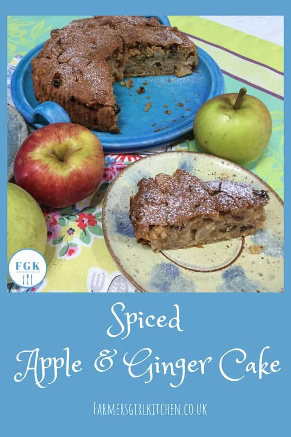 One Bowl Spiced Apple & Ginger Cake, so easy to make, so delicious to eat! #spices #apple #ginger #easy #cake #recipe