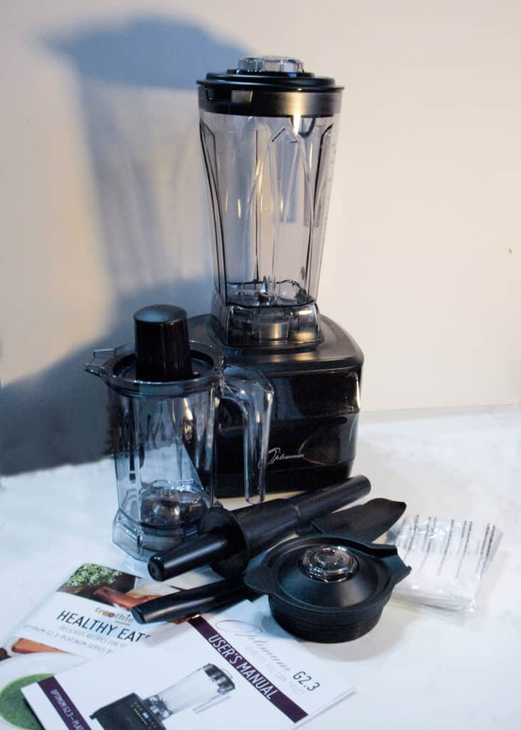 Powerful Froothie Blender makes short work of soups and smoothies and much more